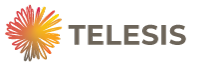 Telesis Business Consulting